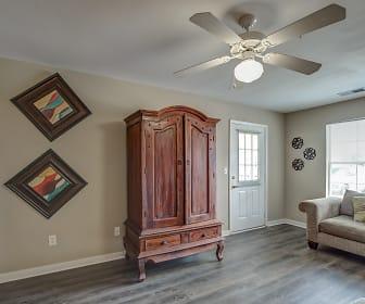 Living Room, Houston Levee