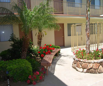 Courtyard, The Reef Studio Apartments