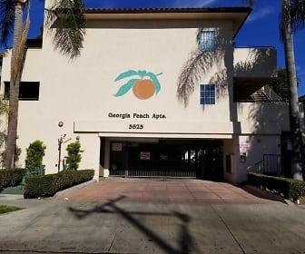 Georgia Peach, Evangelia University, CA