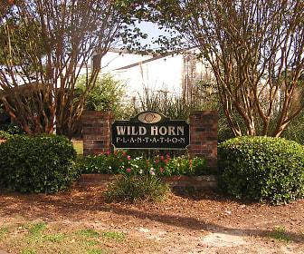 Wild Horn Plantation, Berwick, Savannah, GA