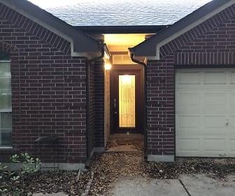 17011 Jigsaw Pathway, Windemere, TX