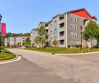 10 Newbridge Apartments, Asheville, NC