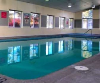 Pool, Egelcraft