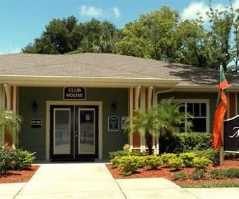 Mobley Park, Davis Islands, Tampa, FL