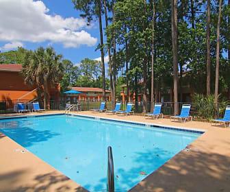Pool, Serotina Lakes Apartments