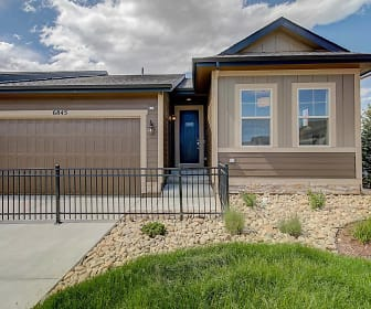 11825 Sandcastle Court, Stroh Ranch, Parker, CO