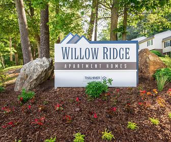 Willow Ridge, Chunn's Cove, Asheville, NC