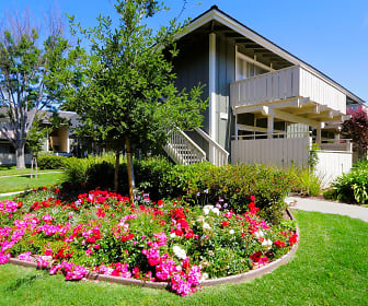 Lakeview Apartments, Tom Maloney Elementary School, Fremont, CA