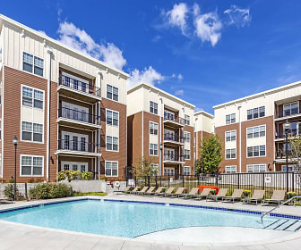 Pool, The Park on Morton - Per Bed Leases