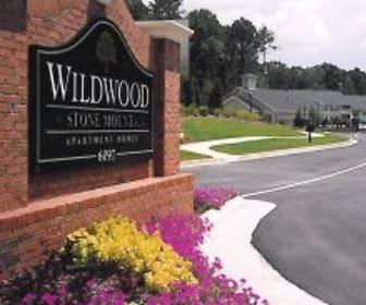 Wildwood at Stone Mountain, Stone Mill Elementary School, Stone Mountain, GA