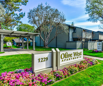 Olive West, Sunnyvale, CA