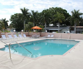 Pool, Palm Village