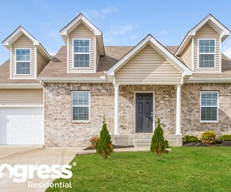 256 Mary Joe Martin Dr, Lavergne, TN