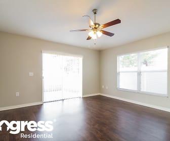 Living Room, 4981 Silver Thistle Lane
