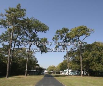 13626 N Florida Ave, Lutz, FL