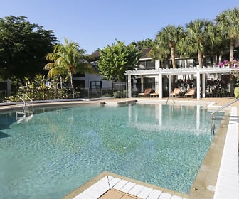Pool, Oasis at Naples