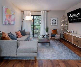 Living Room, Veridian at Sandy Springs