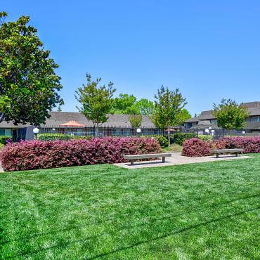 Olive Garden Apartments Sunnyvale Ca 94086