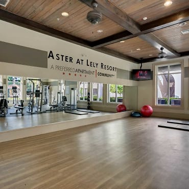 Aster At Lely Resort Apartments - Naples, FL 34113