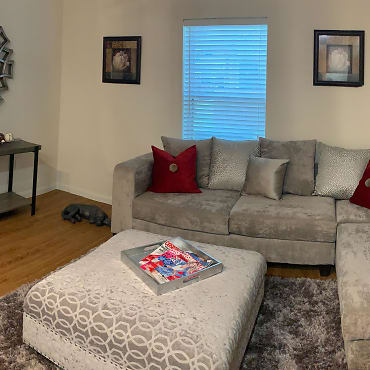 Apartments For Rent In Rancho Viejo Tx 114 Rentals