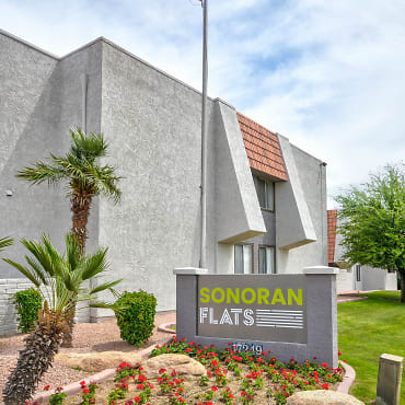 Sonoran Flats