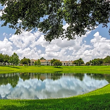 Madison Lake Ned Apartments Winter Haven Fl 33884