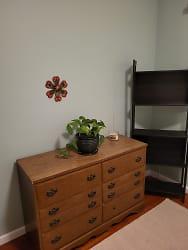 Bookcase & Dresser in bedroom.jpg
