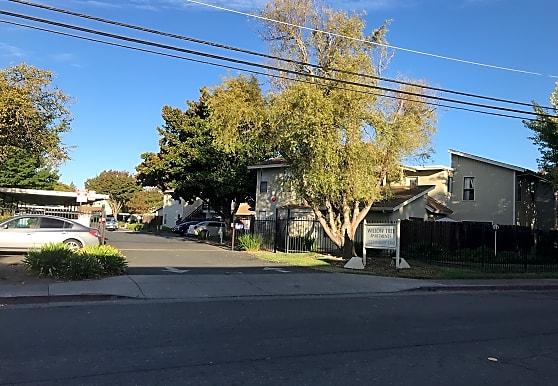 Willow Tree Apartments - Santa Rosa, CA 95403