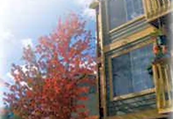 Terrace Heights Apartments, Mountlake Terrace, WA