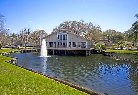 Swan Lake, Tampa, FL