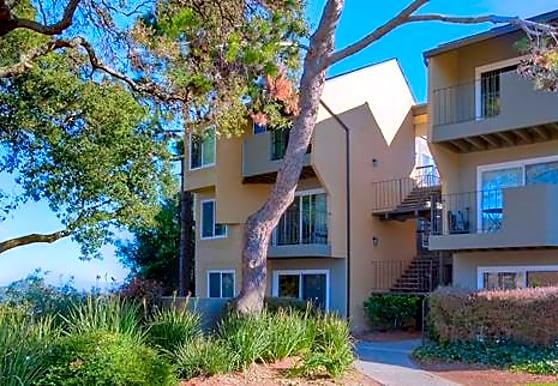 f38d86e8315914af2156bf8fc7095e0e - Marin Gardens Apartments San Rafael Ca