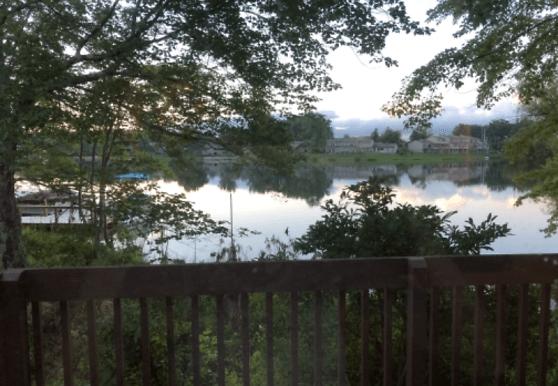 356 Lake Catherine Ln, Crossville, TN