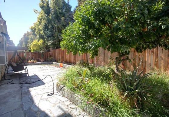 3880 Springfield Common, Fremont, CA