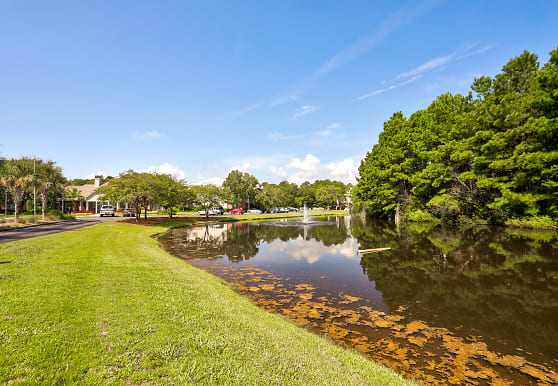 Litchfield Oaks, Pawleys Island, SC