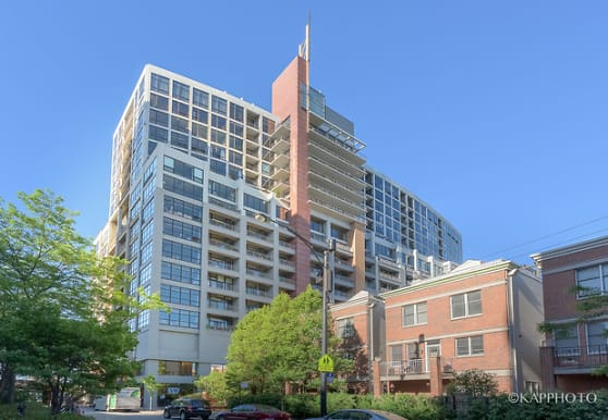 1530 S State St 919, Chicago, IL