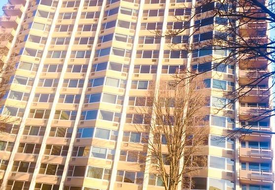 555 W Cornelia Ave 1410, Chicago, IL