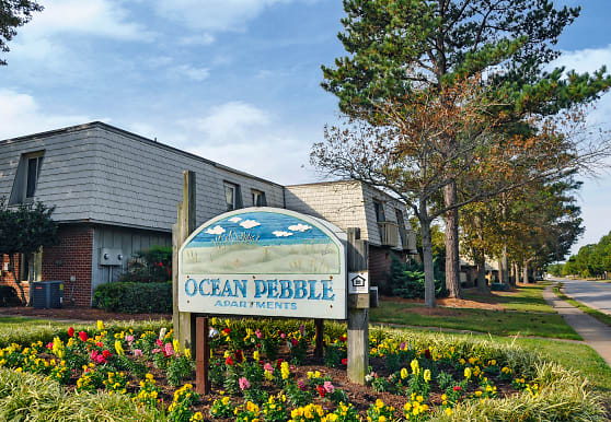 Ocean Pebbles, Virginia Beach, VA