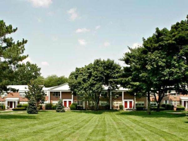 yard featuring a lawn